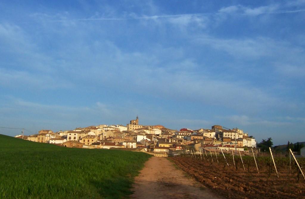 Villamayor de Monjardin von der Ferne