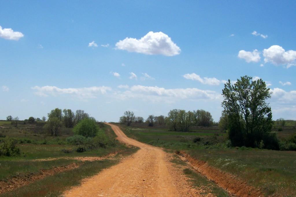 Feldweg am Jakkobsweg