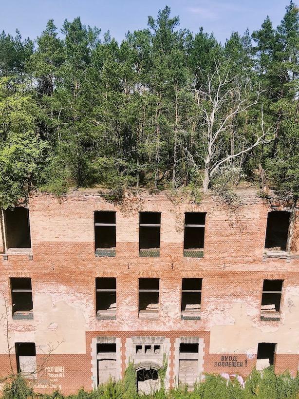 Baum und Zeit Baumkronenpfad Beelitzer Heilstätten: Alpenhaus