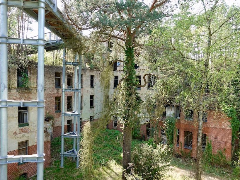 Baum und Zeit: Alpenhaus