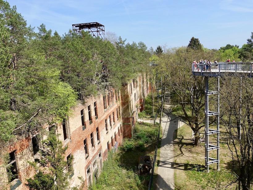 Baum und Zeit: Baumkronenpfad über die Beelitzer Heilstätten