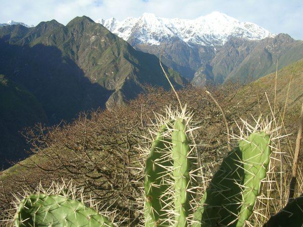 Der unfassbar schöne Ausblick beim Choquequirao Trek im Apurimac Tal
