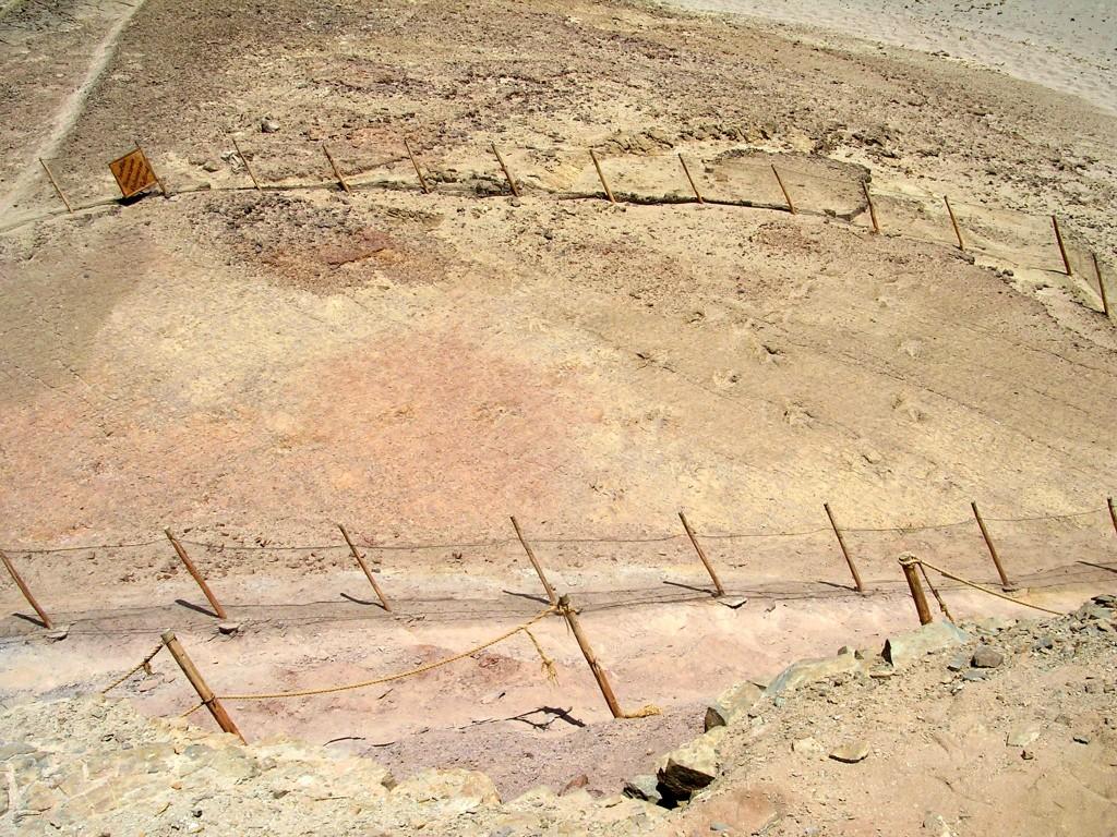Dinosaurierfussspuren im Jurassic Park bei Querulpa