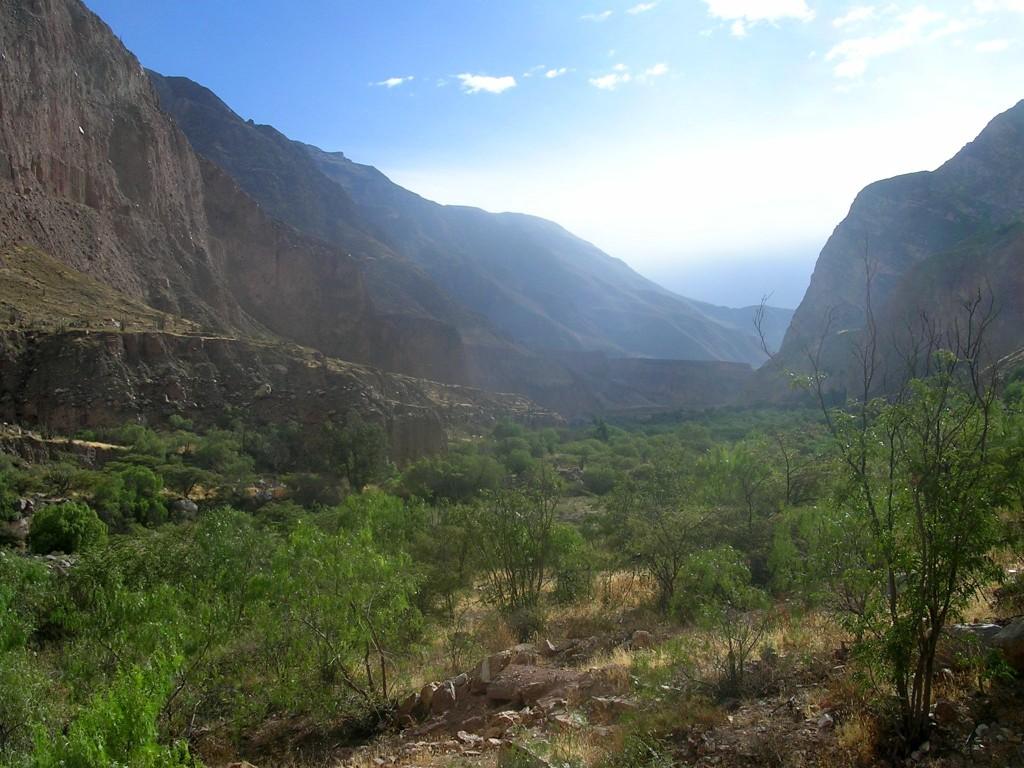Im Cotahuasi Canyon