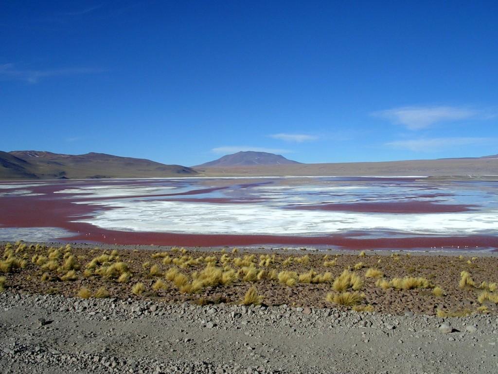 Lagune in der Salr de Uyuni