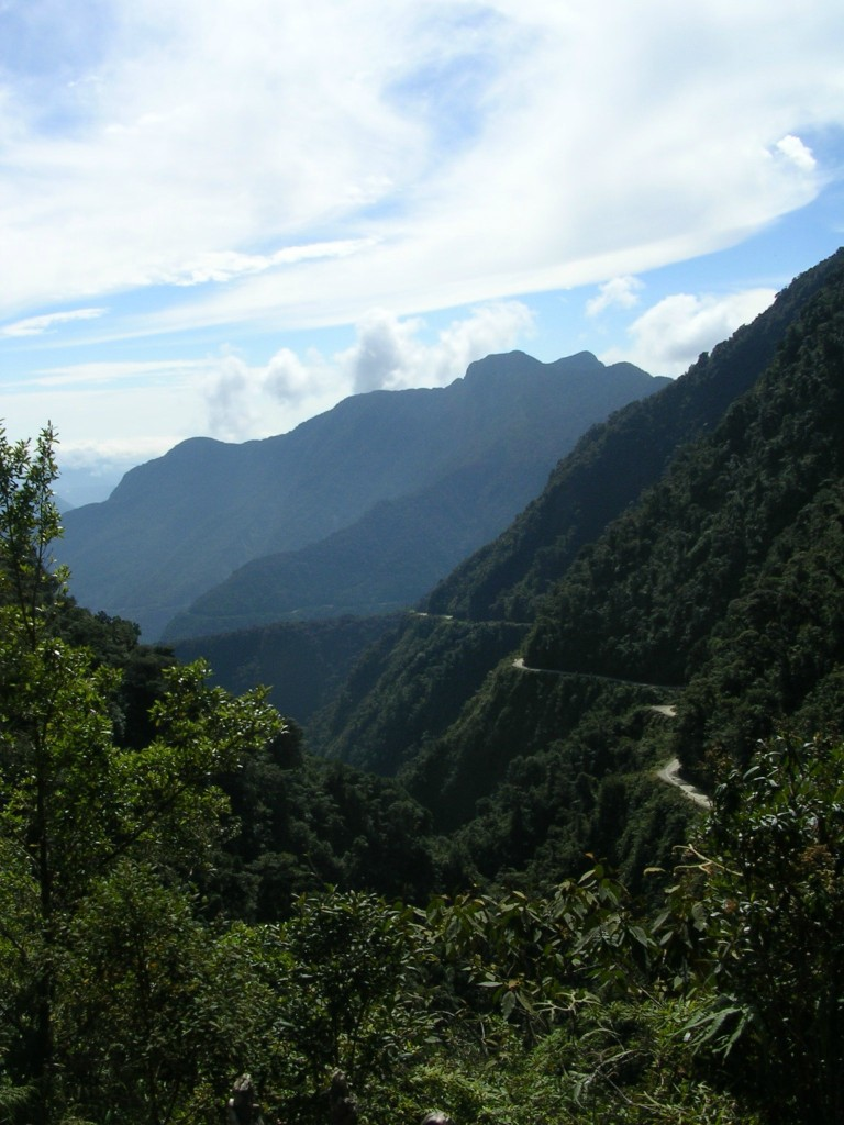Yungas in Bolivien