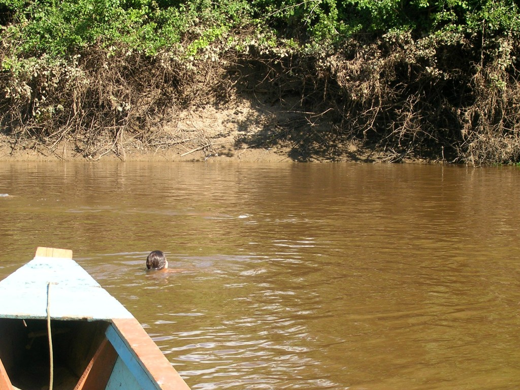Schwimmen mit den Flussdelfinen in der Pampa in Rurrenabaque