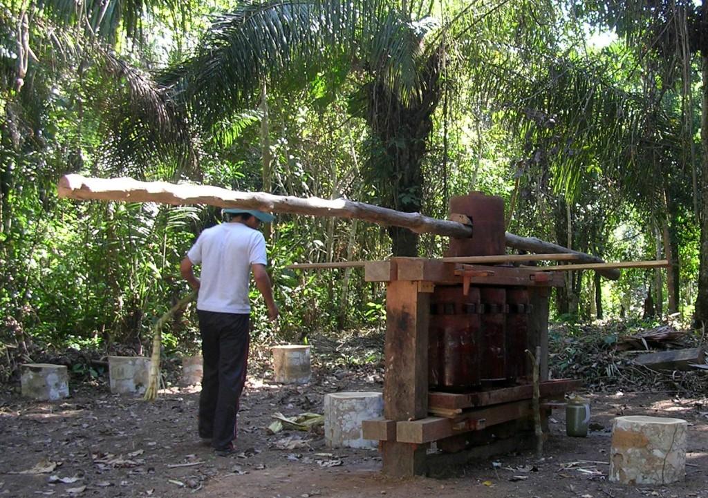 Zuckerrohrpresse im Madidi Nationalpark