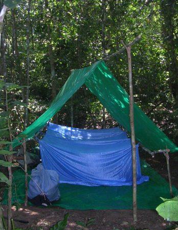 Zeltplatz mitten im Dschungel