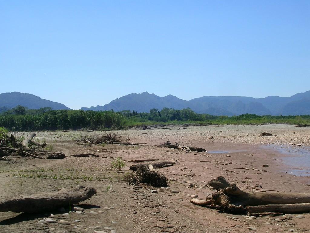 Flussufer am Beni beim Dschungel im Madidi Nationalpark