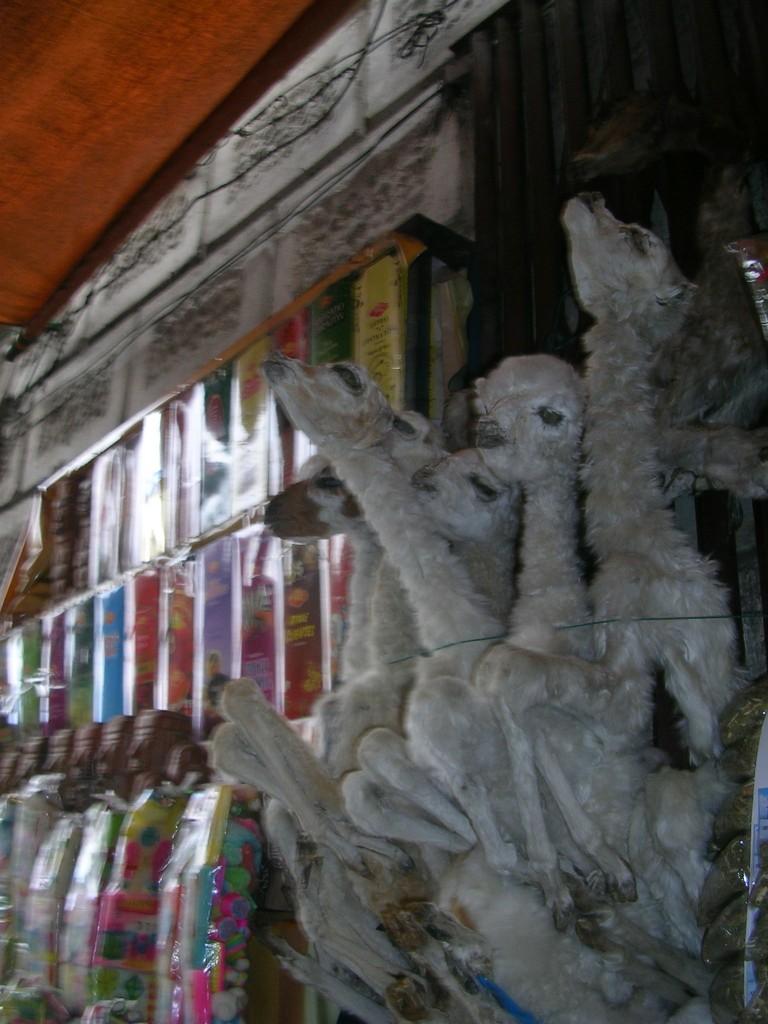 Tote Lämmer am Markt in La Paz