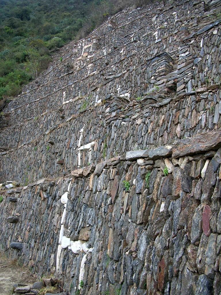 Lamas und die steilen Terrassen von Choquequirao
