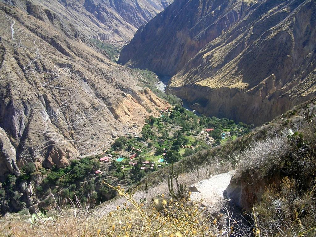 Ausblick auf die Oase im Colca Canyon