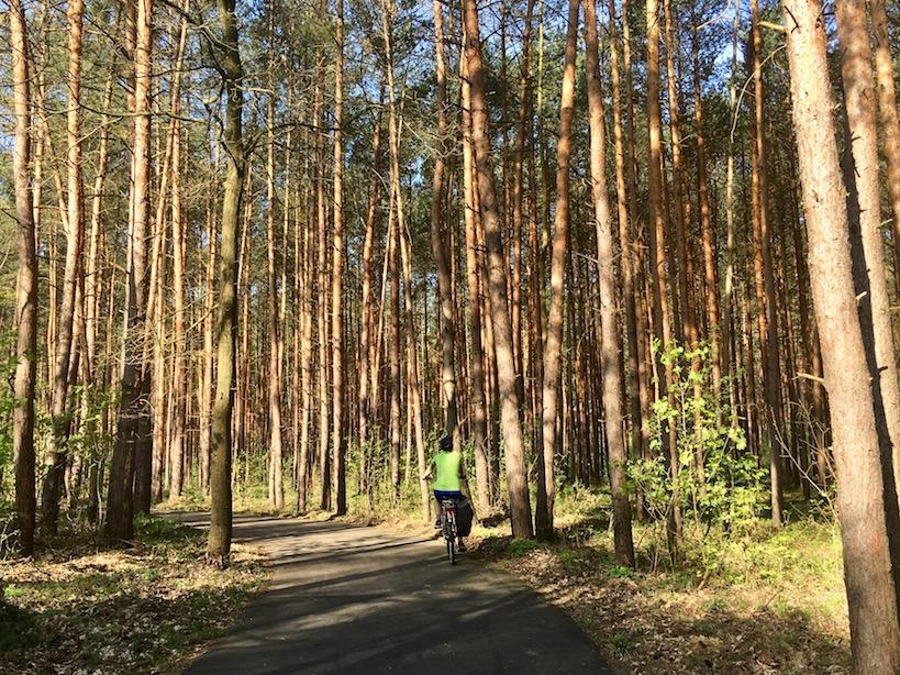 Flaeming Skate: Waldabschnitt