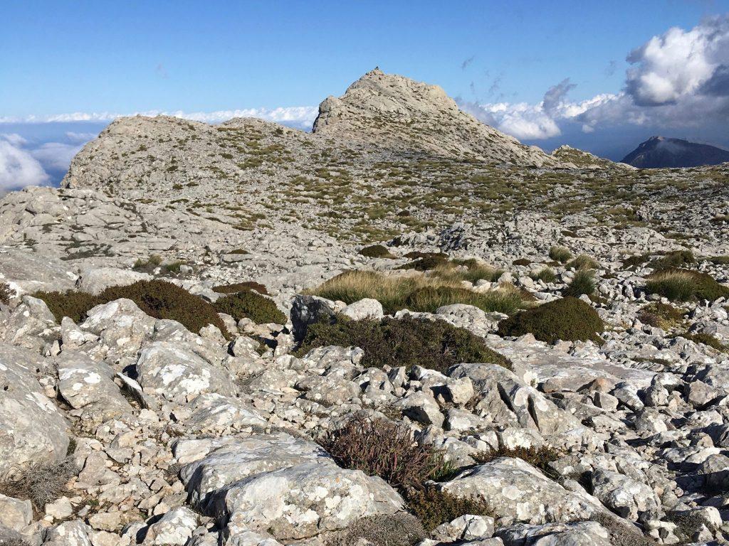 GR 221: Puig de Massanella