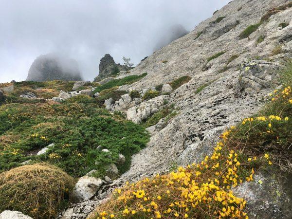 GR20: Am Weg zum Col de Bavella