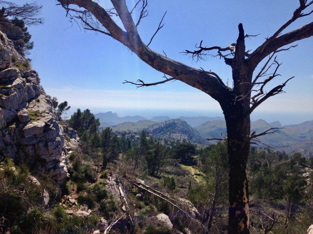Ausblick Richtung Süden der Insel am Weg vom Refugio Ses Fontanelles nach Estellencs