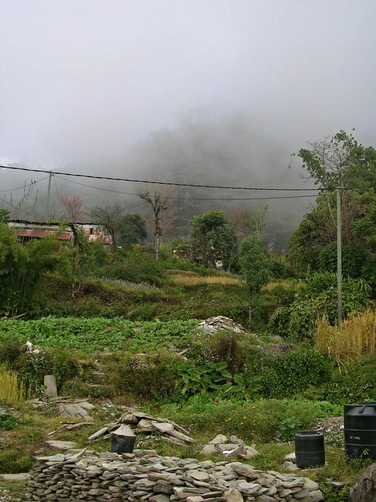 Zwischen Sarangkot & Nagdada