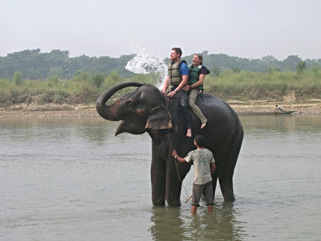 Elefantenbaden in Chitwan