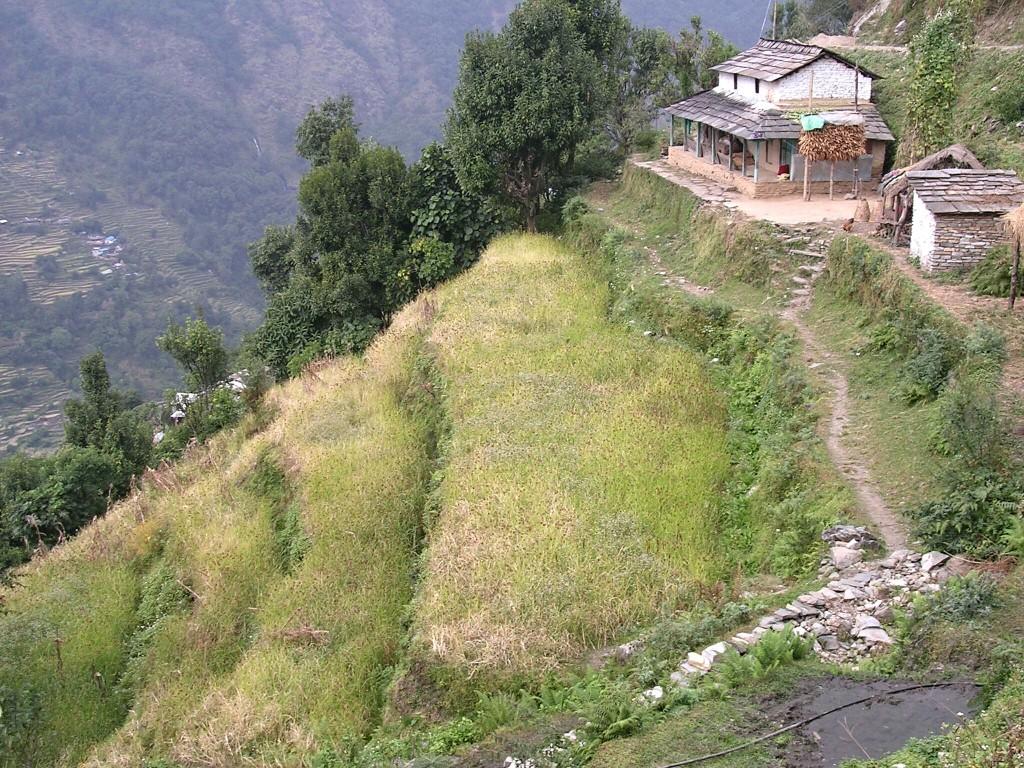 Ackerterrassen am Annapurna Basecamp Trek