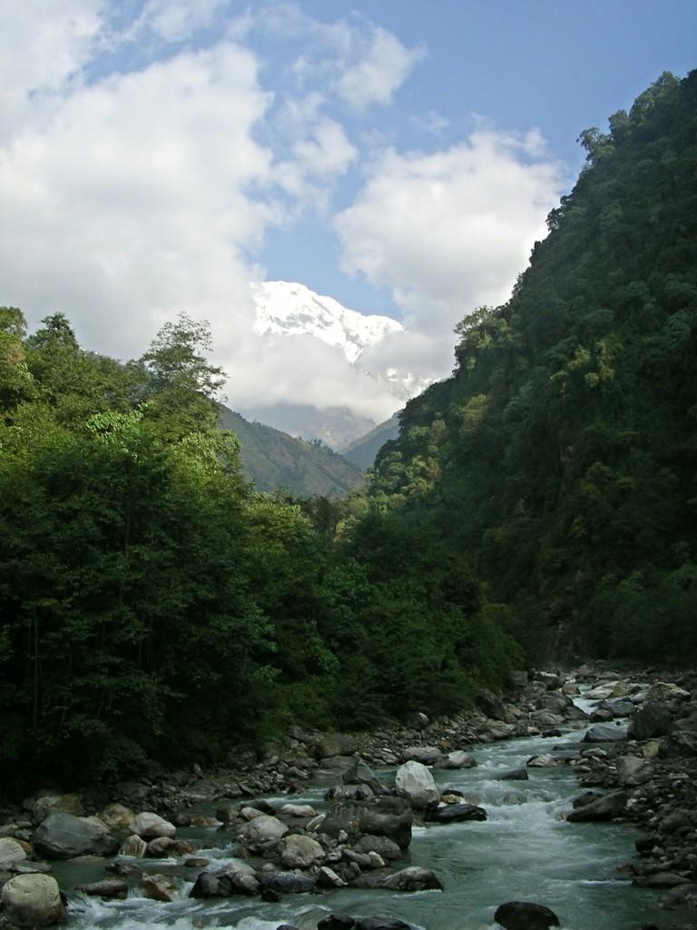 Fluss am Weg zum Annapurna Basecamp