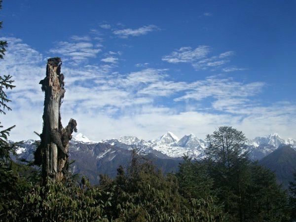 Am Weg von Phedi nach Gul Bhanjyang auf der Helambu Trekkingroute in Nepal