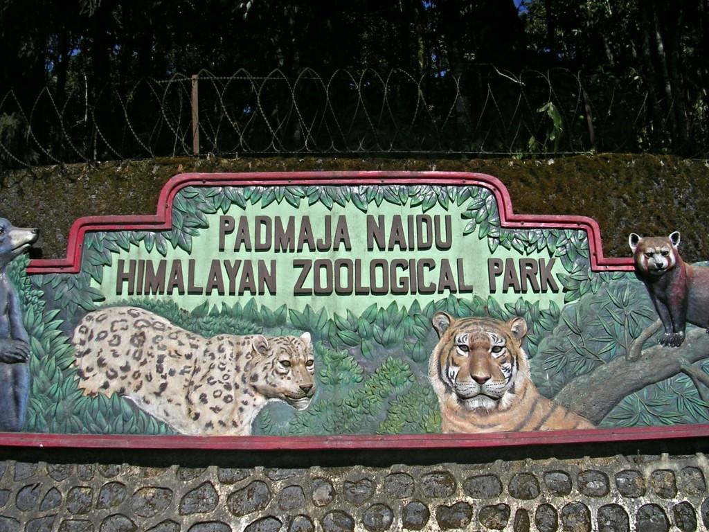 Zooeingang in Darjeeling