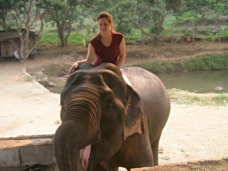 Elefantenschule bei Chiang Mai