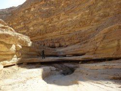Im eindrucksvollen Daroch Canyon