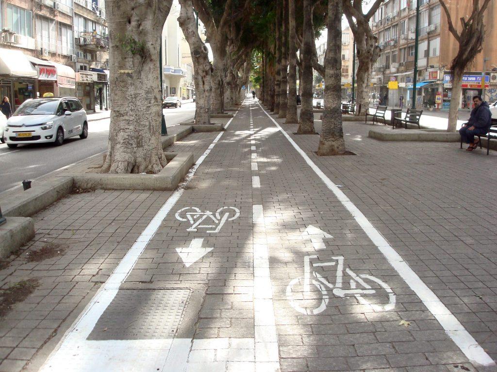 Fahrradstreifen in der Mitte eines leeren Boulevards, der durch eine Baumallee durchführt