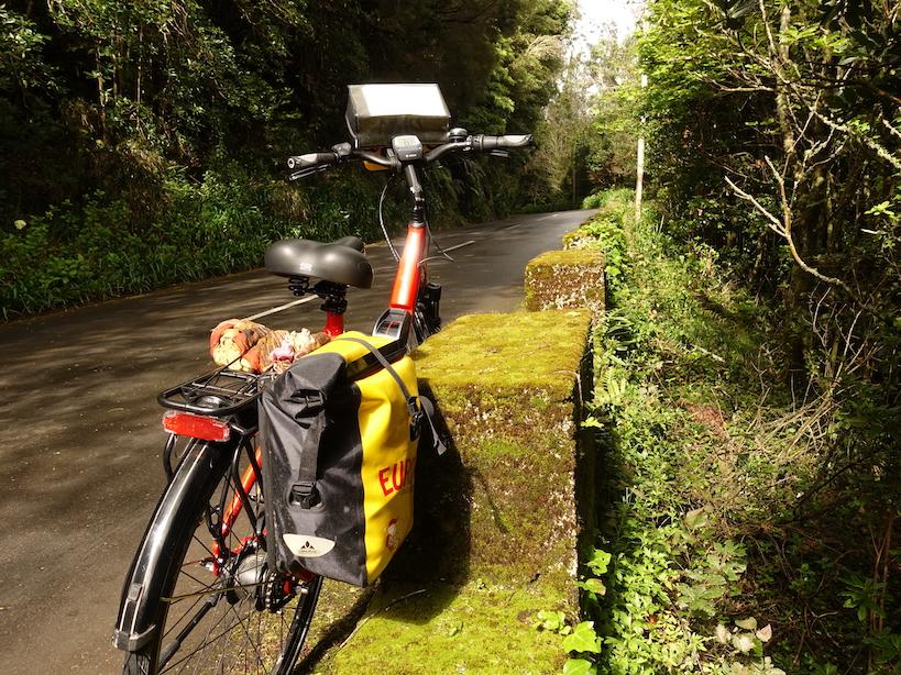 Rotes Rad lehnt an einem mit moosbewachsenen Betonblock an der Straße in einem Wald