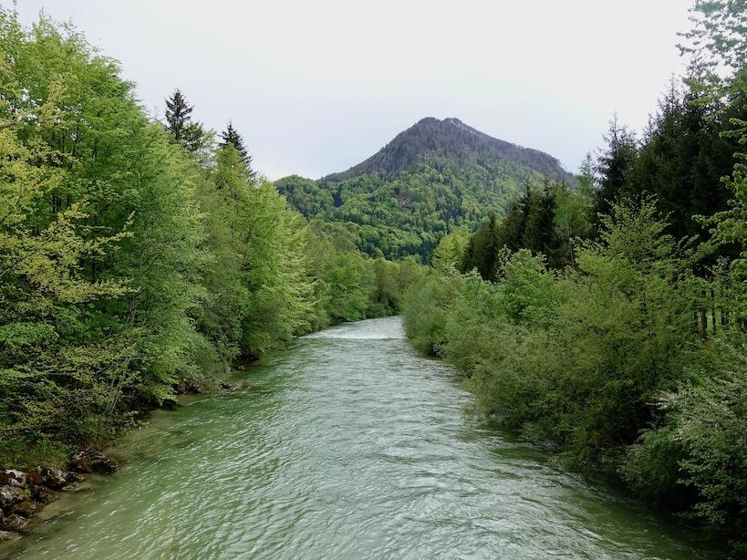 Türkiser Fluss mit bewaldetem Flussufer und hügeligem Berg im Hintergrund